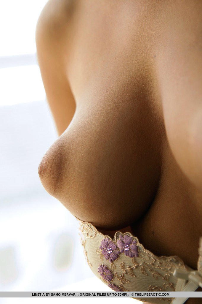 Big Puffy Nipples